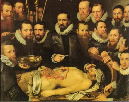 Licao-Anatomia-Vander-Meer-e1342463870349